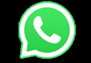 WhatsApp +55 11 947203481